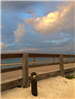 city of vero beach photograph of jaycee beach boardwalk