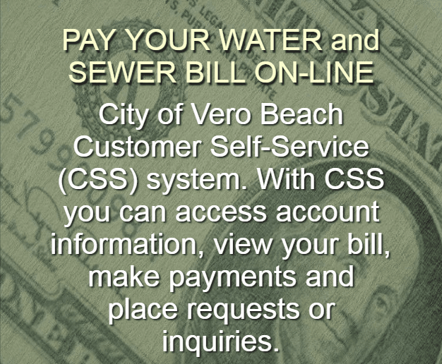 CSS Payment System